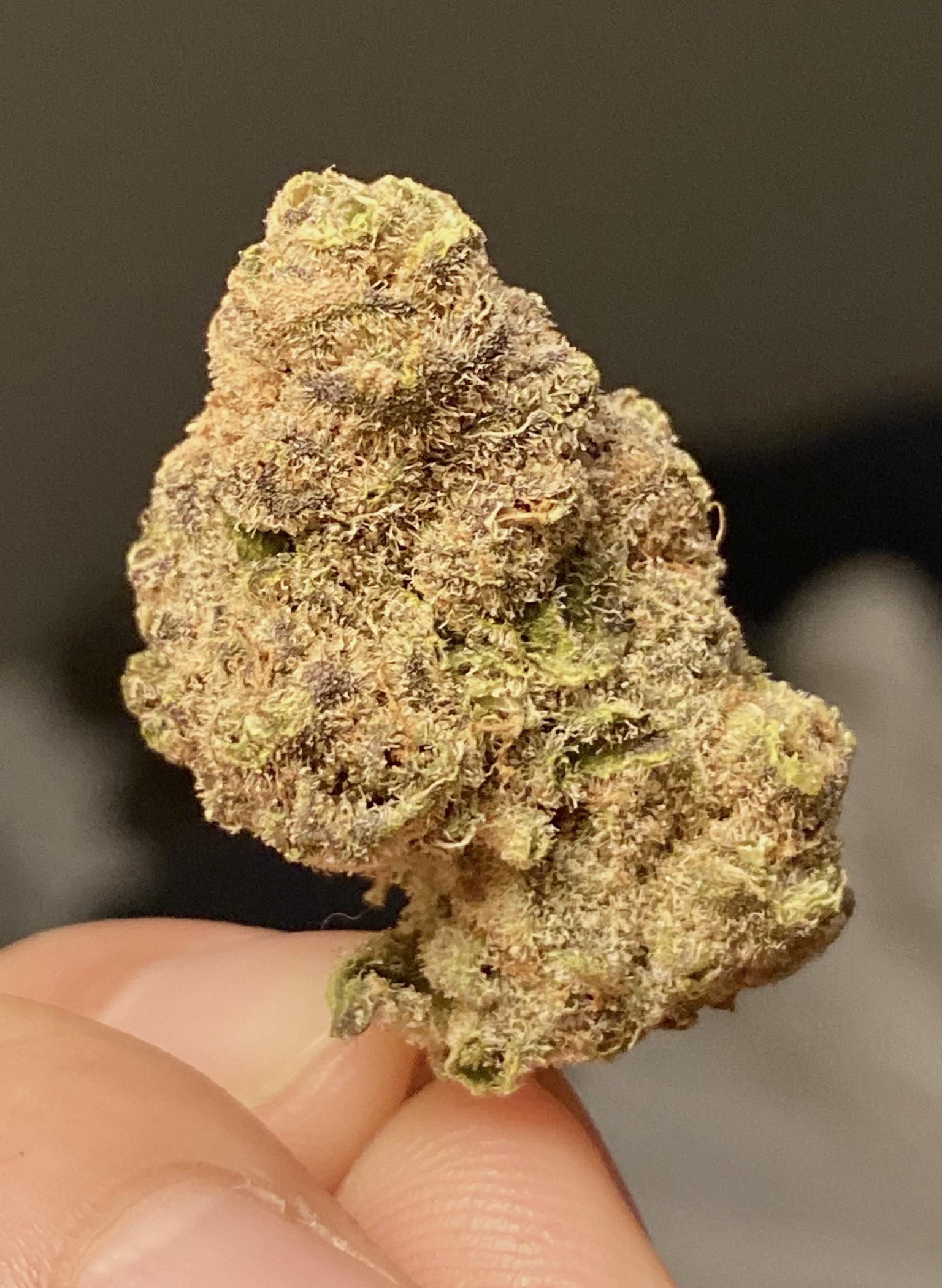 Love Cannabis – Wedding Crasher – CaliSeedStore®